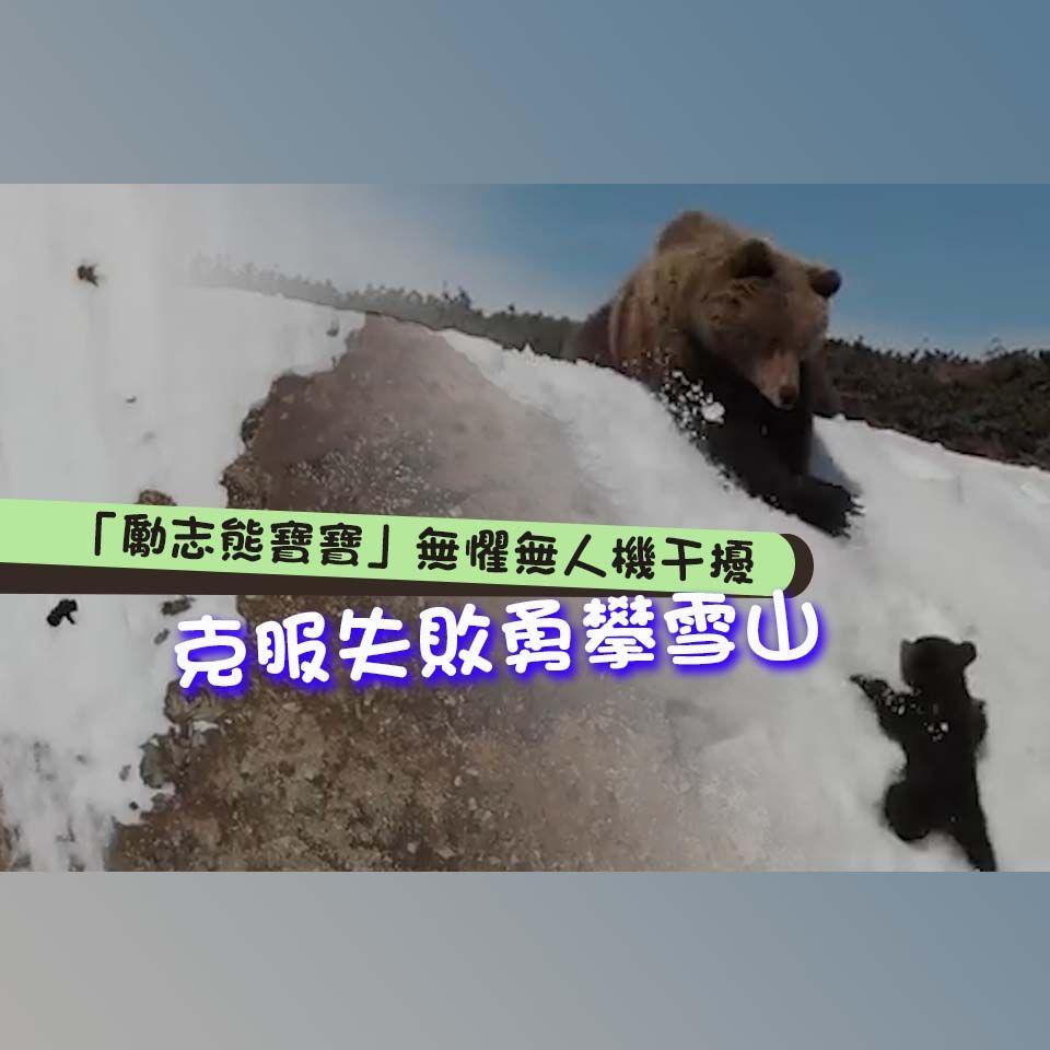 克服失敗勇攀雪山