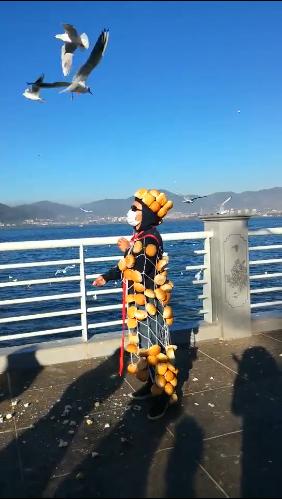有片!「麵包超人」獻身餵海鷗