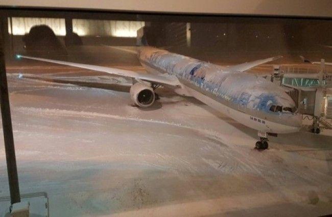 北海道函館機場取消24航班