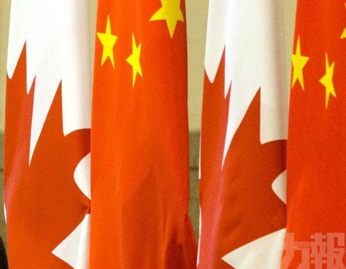 華駐加使館斥製造恐慌氣氛