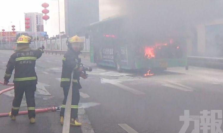 深圳跨市巴士行駛途中突起火
