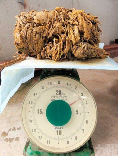 胃部藏逾3公斤塑膠垃圾