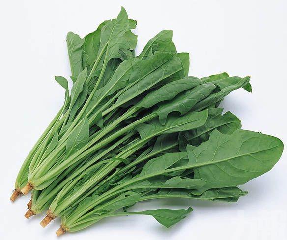 菠菜含化學物作用似類固醇 倡列禁藥