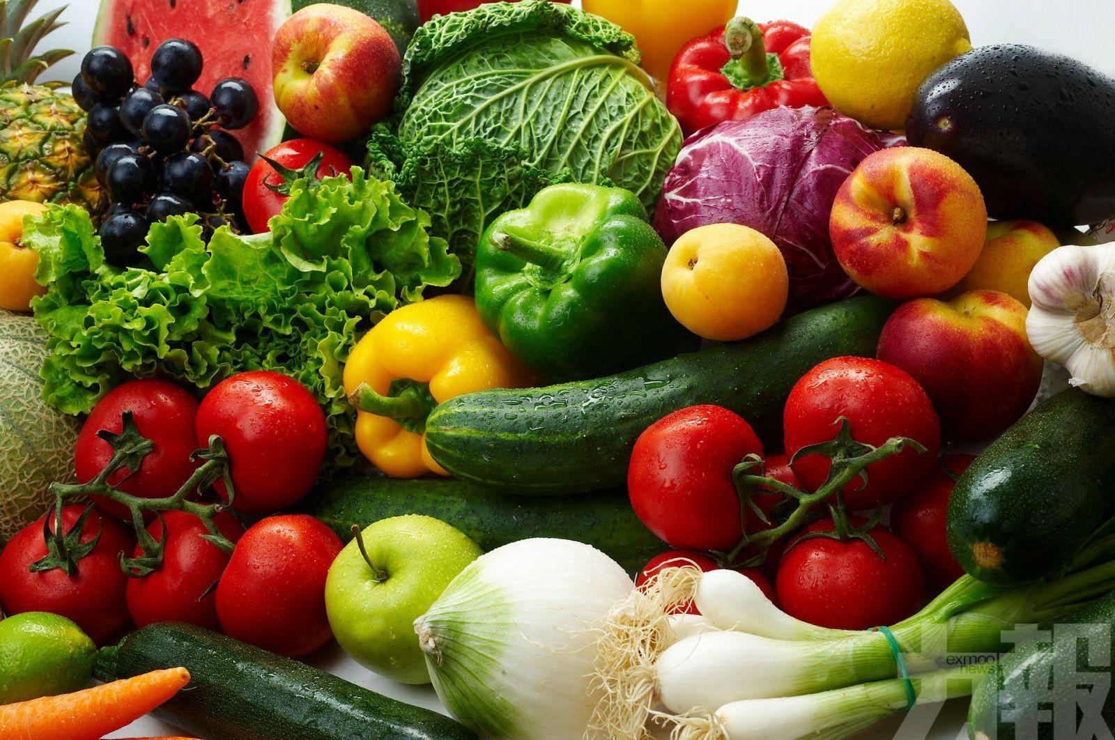 蔬菜價格高於去年 惟漲幅有限