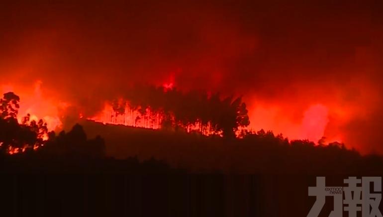 葡萄牙中部3處山火至少9傷