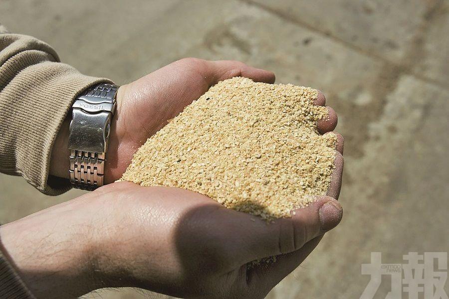 中國放開阿根廷豆粕進口