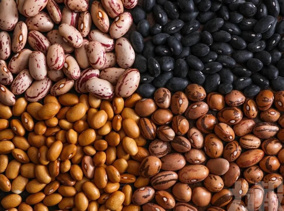 允許符合要求的貝寧大豆進口