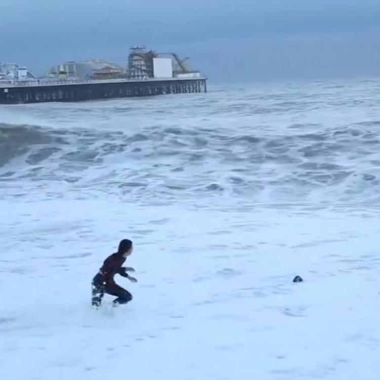 主人撲巨浪救愛犬 幾乎命都冇