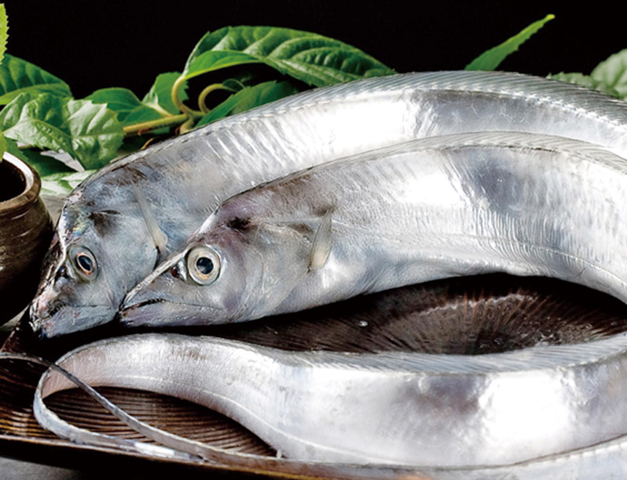 90萬買牙帶魚得個桔