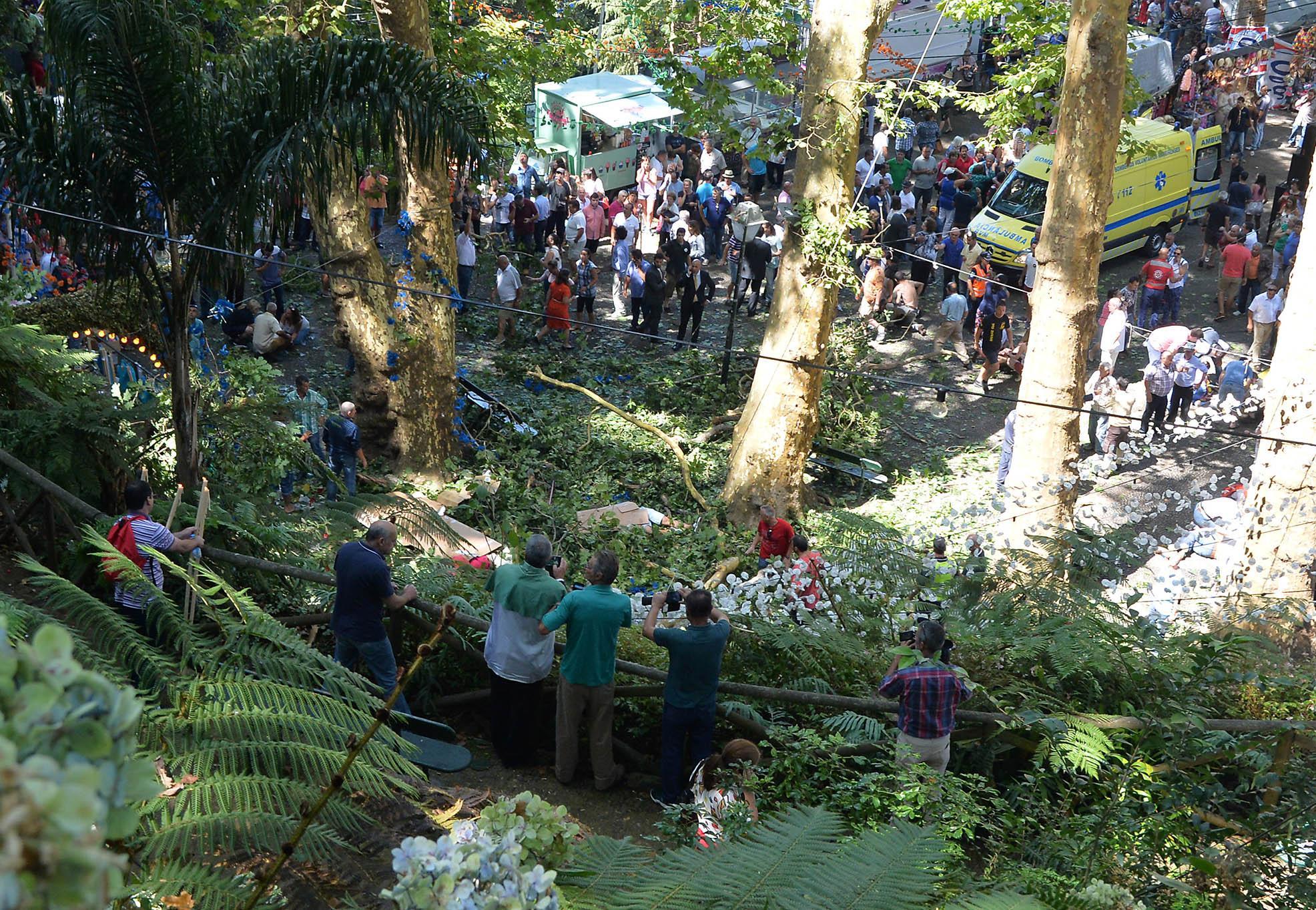 200年古橡樹倒塌致13死多人骨折