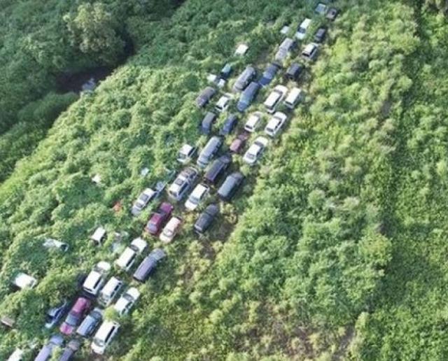 190輛輻射車一度流出部分被轉賣