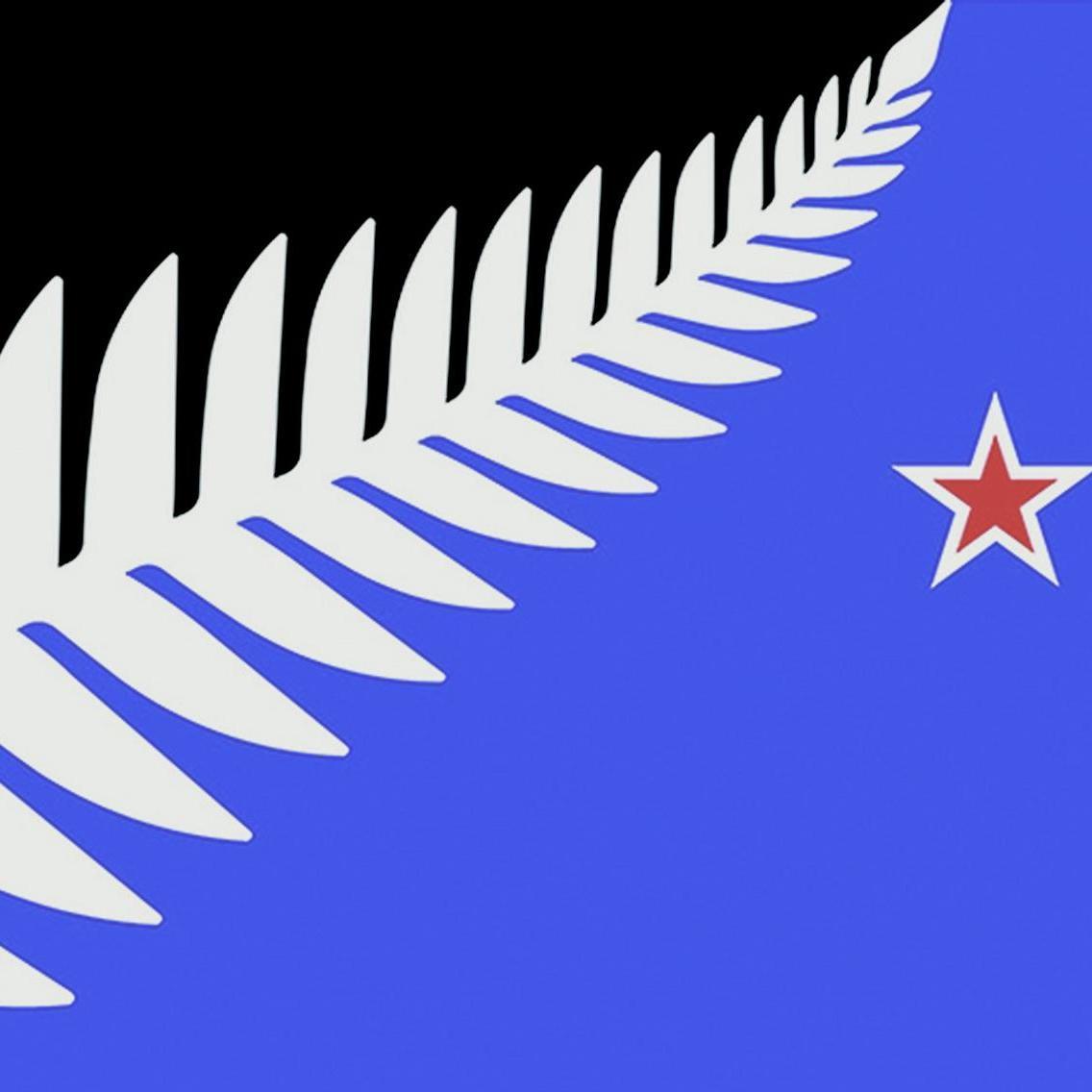 紐西蘭銀蕨新國旗勝