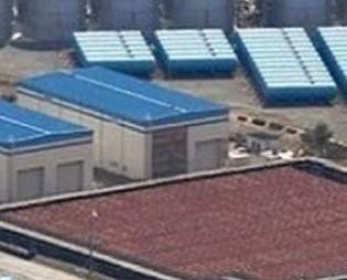 日福島核電站洩漏污水