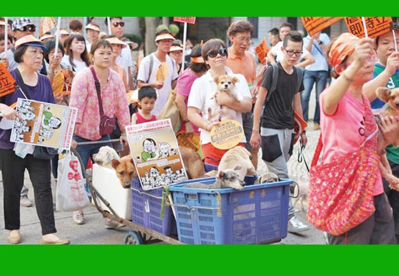 議員憂犬隻不戴口罩存隱患
