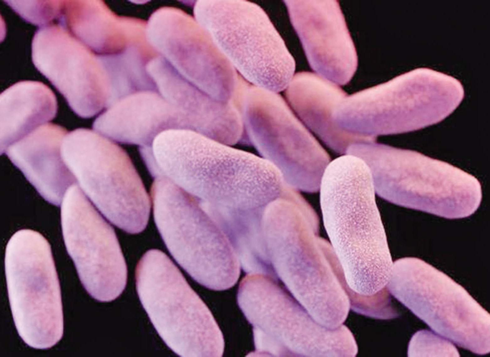 消滅超級細菌