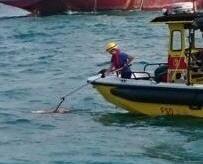 西環海面載浮載沉