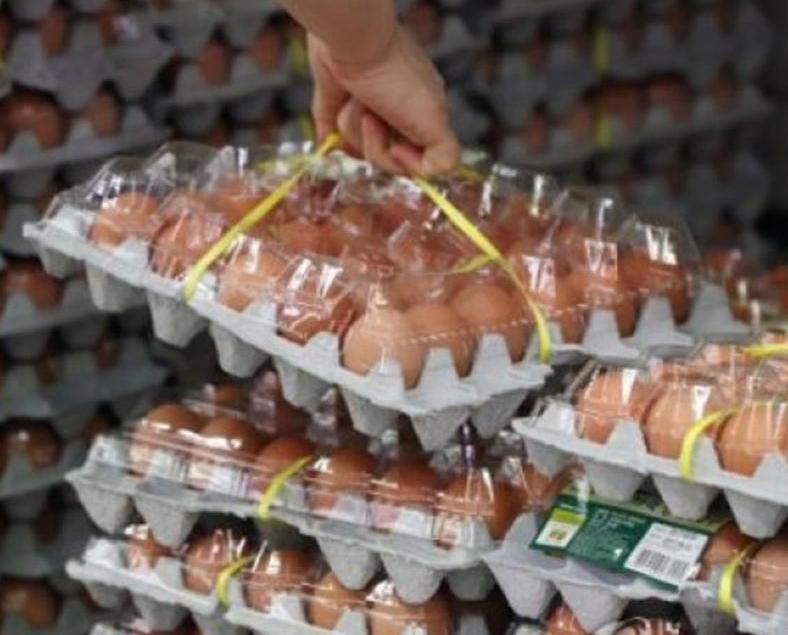 多間大型連鎖超市今起全面停售