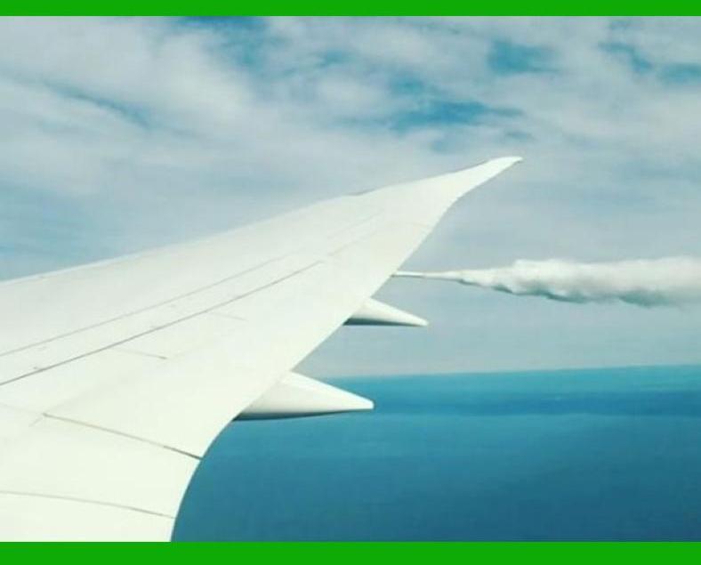 聯航客機緊急折返悉尼無人傷