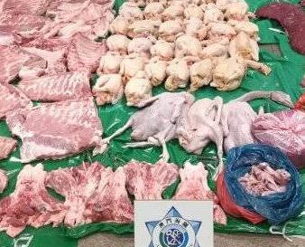 緝獲224.5公斤肉類