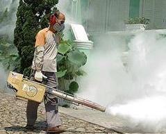 當局社區宣傳籲防範蚊患