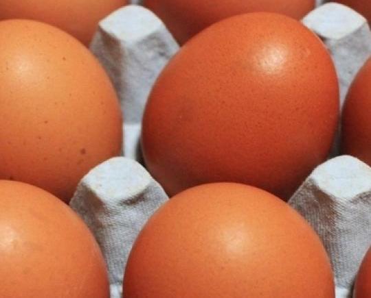 政府決定全數回收銷毀問題雞蛋