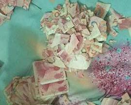 五萬現金撕成碎片