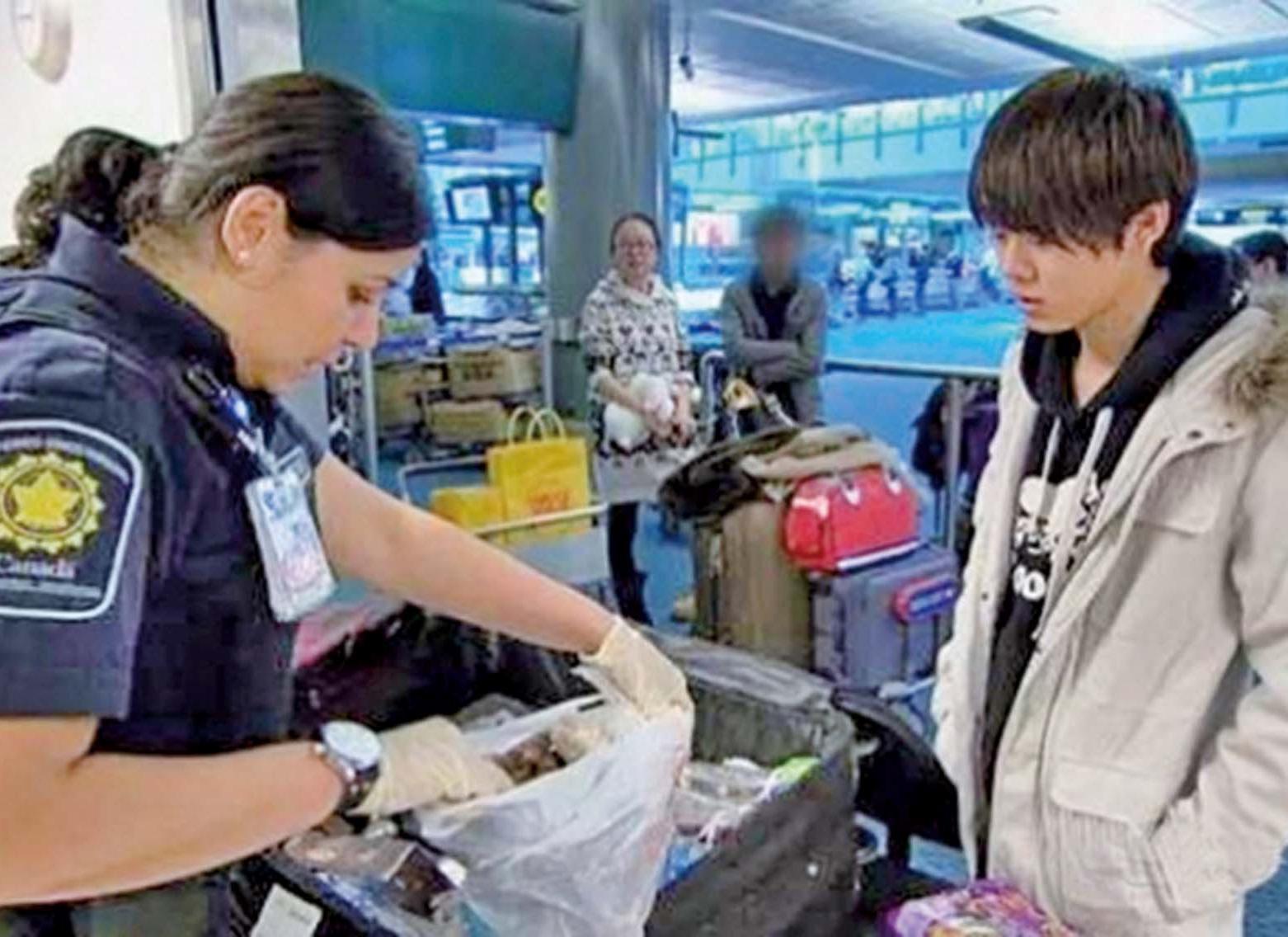 留學生被加拿大遣返