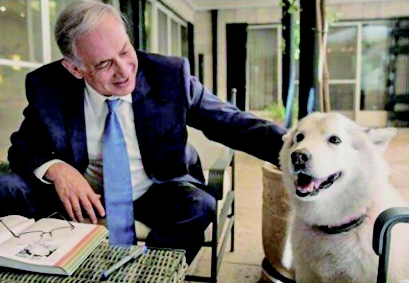 以總理愛犬咬傷兩人