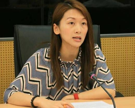 社諮委員促優化舊區供電