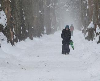 寒流襲歐 至少23人死亡