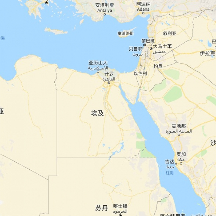 埃及一巴士翻側著火至少八死