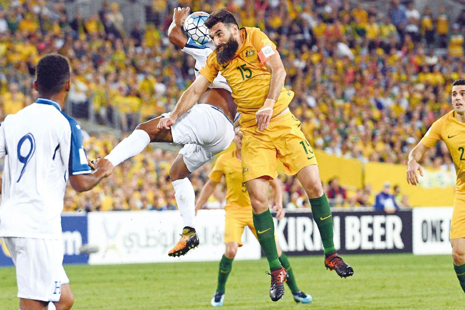 澳洲排洪晉世盃決賽周