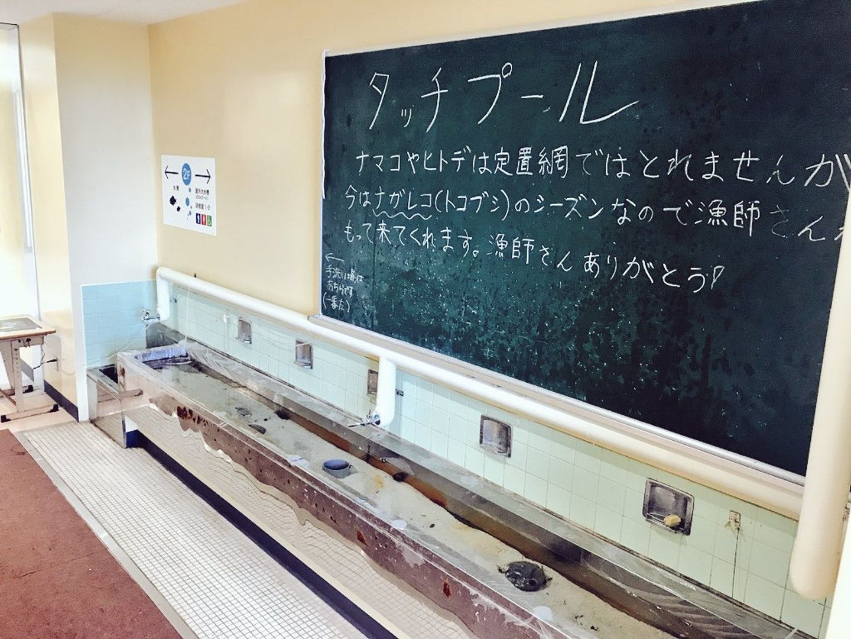 日本廢置學校改建水族館